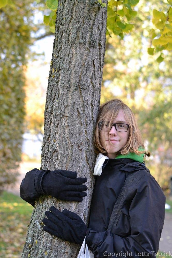 Krama ett träd