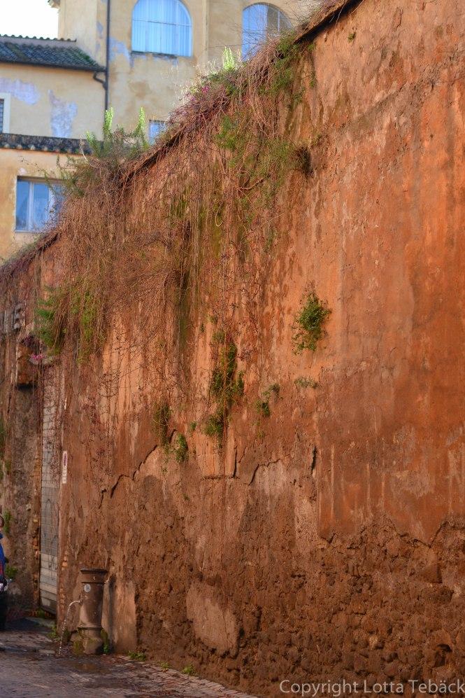 Hög mur