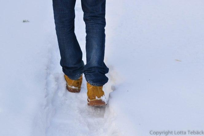Framåt i snön