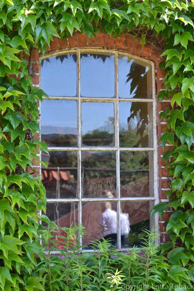 Fönster och reflektioner